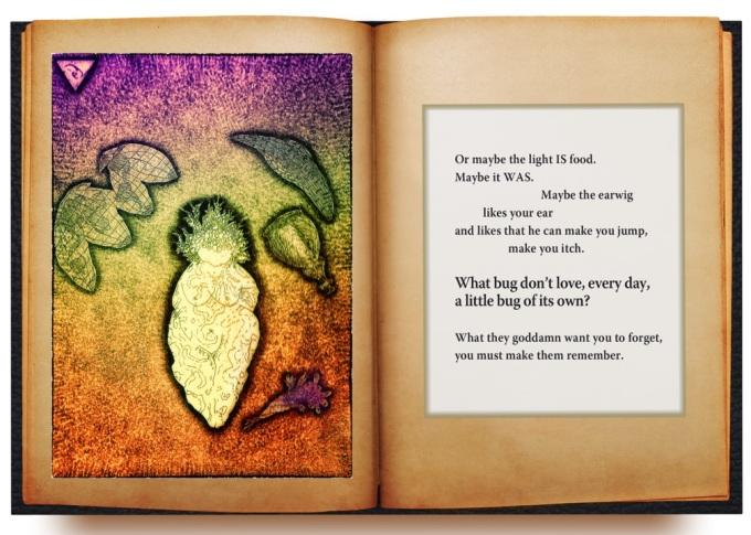 Book Excerpt from Nance VanWinckel