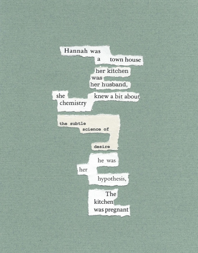 Text: Hannah was / a town house / her kitchen / was / her husband. / she knew a bit about / chemistry / the subtle / science of / desire / he was / her / hypothesis / The / kitchen / was pregnant